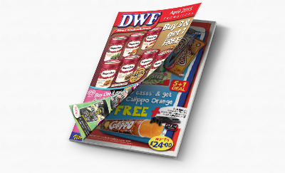 frozen food ice cream wholesaler brochure